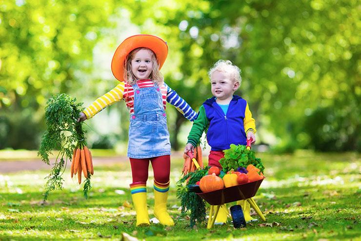 Ekološko pridelana hrana